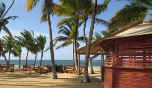 Surf Shack and Tables Las Ballenas, Las Terrenas, Dominican Republic