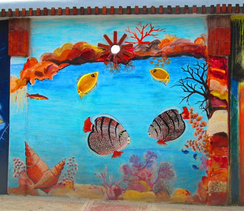 Wall mural depicts various Beautiful Caribbean Fish in Las Terrenas Dominican Republic and coral beds