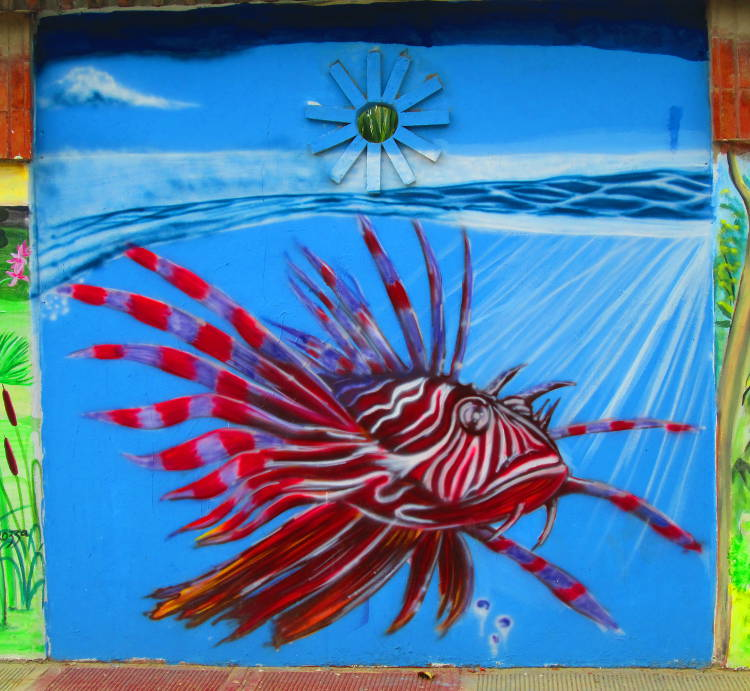 Lion Fish done in red white and brown on a blue aquatic impressionistic background