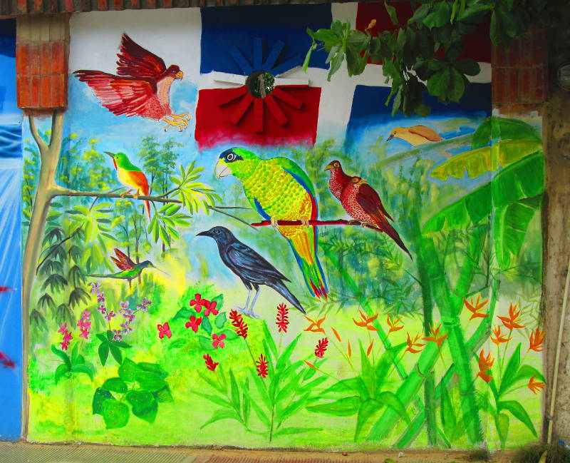 Several types of birds common to the Caribbean and specifically the Dominican Republic with of course the flag in the background and a jungle scene where the birds are