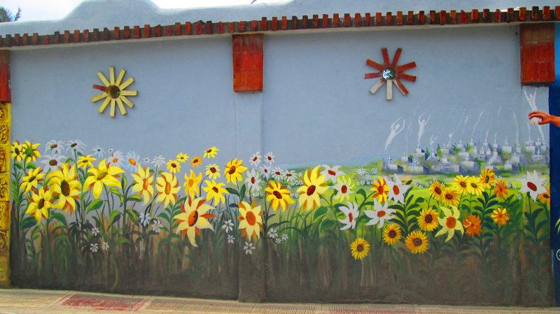 Lovely field of Sun Flowers